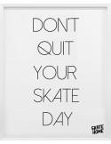 Pack of 4 fans illustrations skateboarder gift idea